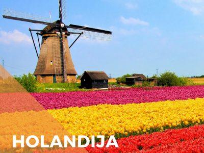 Holandija-stipendija-master-studije-2018-upis-inostranstvo-via-academica