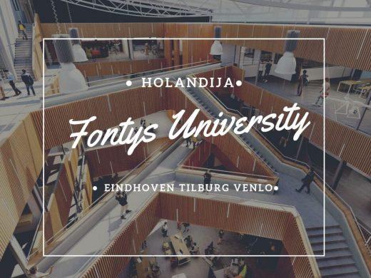 studije it holandija stipendije studije u holandiji