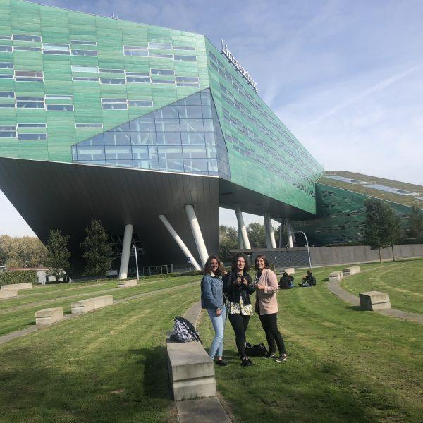 Univerzitet u Groningenu_Mirela Perla_kampus