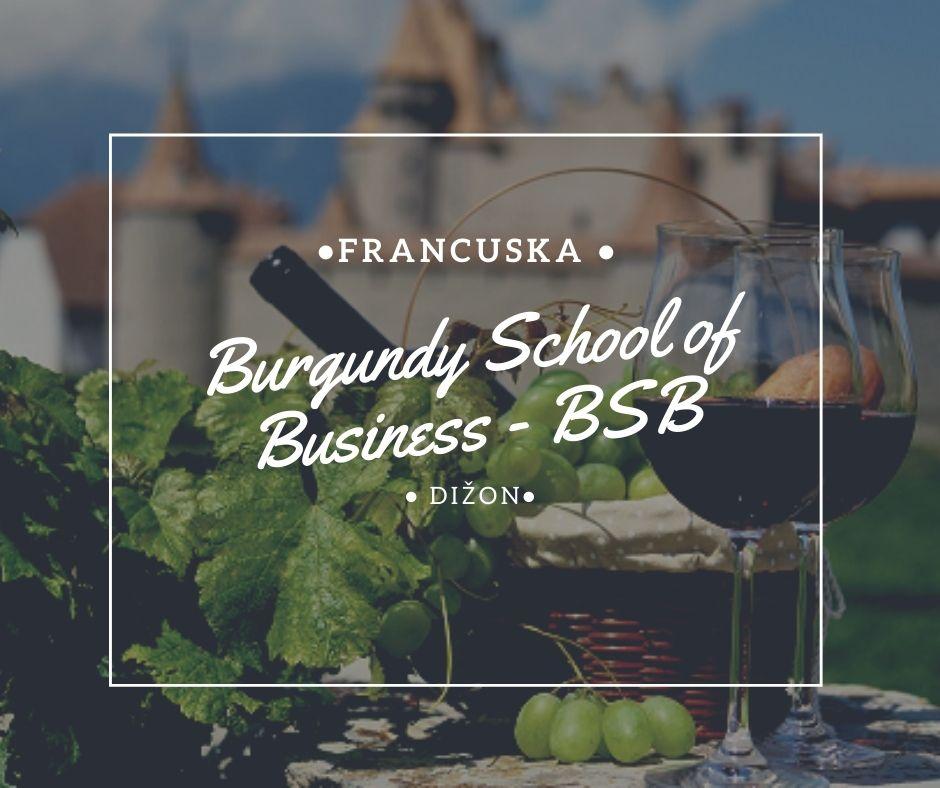 Burgundy School of Business Via Academica Study in France