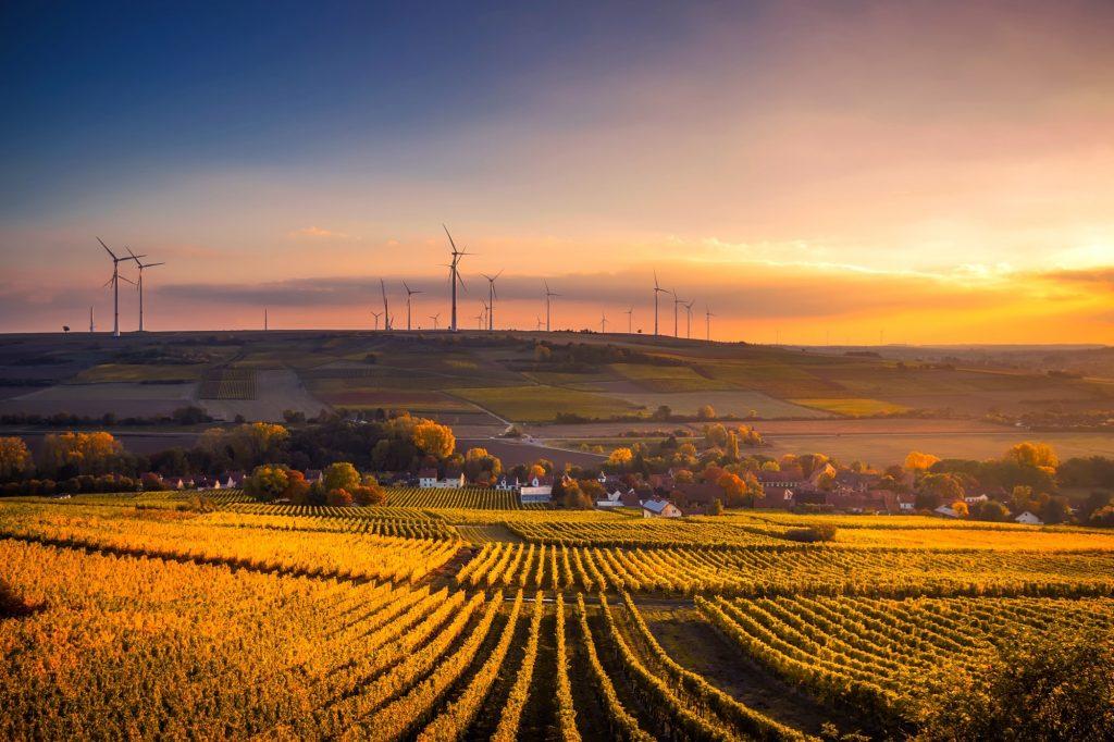 LUISS business school stipendija za master in sustainability